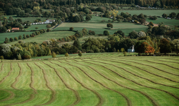 Limburgse landschap