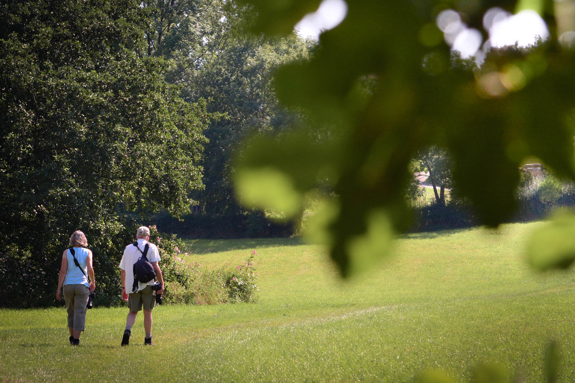 Workshop landschapsfotografie Limburg